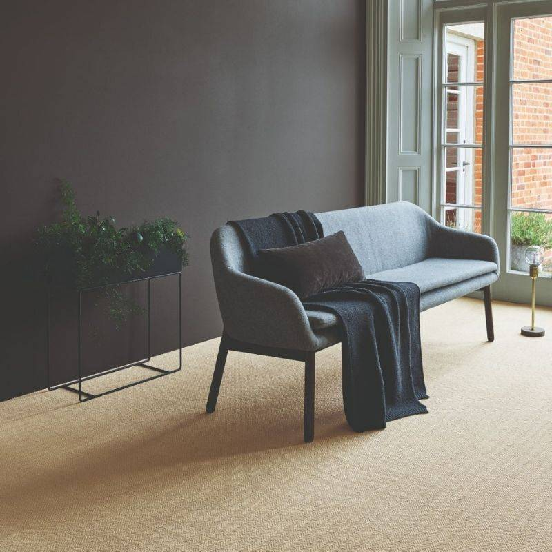 light brown carpet in front room